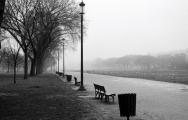 fog-washington-mall