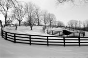 winter-ridgefield-ct