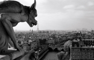 view-of-paris-from-notre-dame